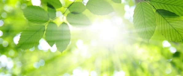 アンチ紫外線!UVアイテムの常識と日焼けてしまってからの対処方法